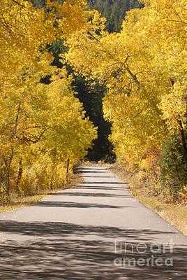 Road To Autumn Art Print by Dennis Hammer