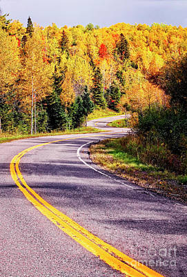 Photograph - Road To Autumn by Scott Kemper