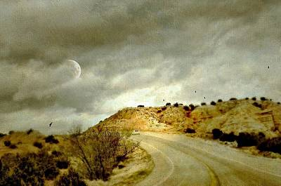 Photograph - Road To Bandelier by Diana Angstadt