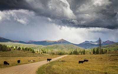 Photograph - Road To Colorado  by Dawn Romine