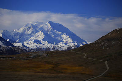 Wall Art - Photograph - Road To Denali by Diana Marcoux