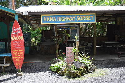 Photograph - Road To Hana by Michelle Welles