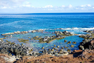 Photograph - Road To Hana Study 04 by Robert Meyers-Lussier