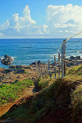 Photograph - Road To Hana Study 06 by Robert Meyers-Lussier