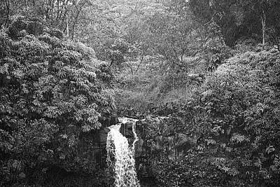 Photograph - Road To Hana Study 12 by Robert Meyers-Lussier