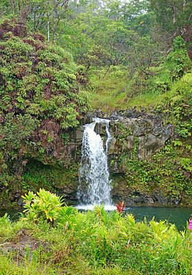 Photograph - Road To Hana Study 13 by Robert Meyers-Lussier