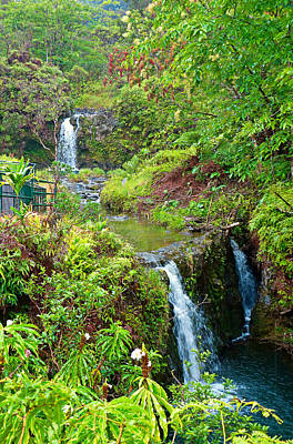 Photograph - Road To Hana Study 14 by Robert Meyers-Lussier