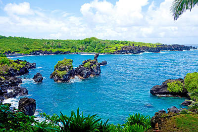 Photograph - Road To Hana Study 15 by Robert Meyers-Lussier