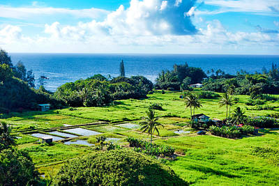 Photograph - Road To Hana Study 18 by Robert Meyers-Lussier