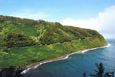 Photograph - Road To Hana by Will Borden
