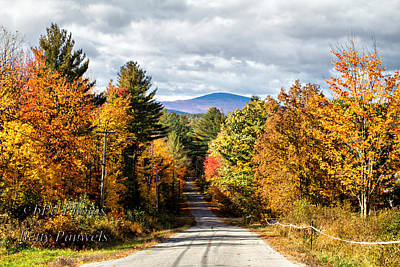Photograph - Road To Mt. Kearsage by Betty  Pauwels