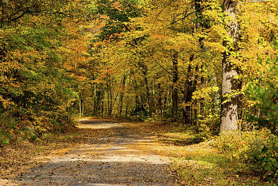 Photograph - Road To Nowhere Town Massachusetts by Jeff Folger
