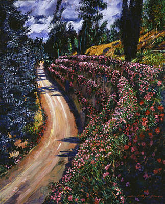 Road To Paradise Art Print by David Lloyd Glover