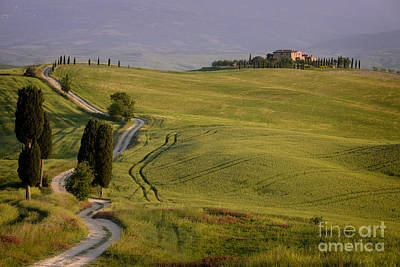Photograph - Road To Terrapille In Tuscany by IPics Photography