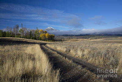 Photograph - Road To The Sawtooths by Idaho Scenic Images Linda Lantzy