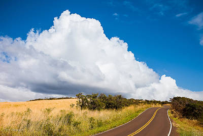 Photograph - Road To Waimea by Tim Newton