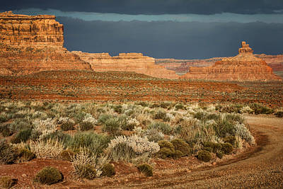 Photograph - Road - Valley Of The Gods - Utah by Nikolyn McDonald