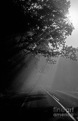 Photograph - Road With Early Morning Fog by Jim Corwin