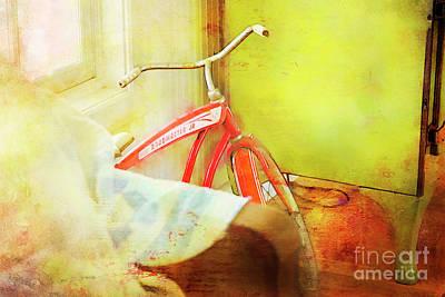 Photograph - Roadmaster Jr. Bicycle by Craig J Satterlee