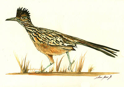 Roadrunner Painting - Roadrunner Bird by Juan Bosco