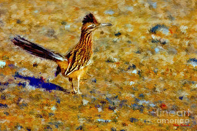 Photograph - Roadrunner by Blake Richards