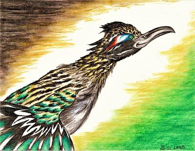 Roadrunner Drawing - Roadrunner by Bryant Lamb