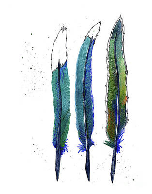 Roadrunner Drawing - Roadrunner Feathers by Allie Rowland