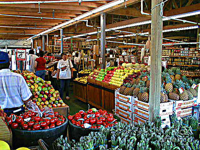 Photograph - Roadside Farmers Market - Davie Florida by Merton Allen