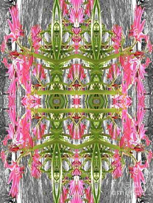 Photograph - Roadside Lilies  by Expressionistart studio Priscilla Batzell