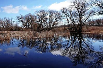 Photograph - Roadside Pond I by Debbie Oppermann