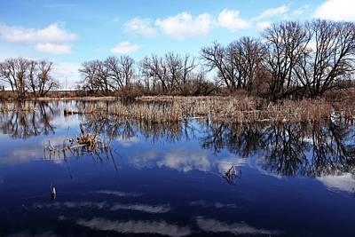 Photograph - Roadside Pond II by Debbie Oppermann