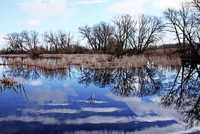 Photograph - Roadside Pond IIi by Debbie Oppermann