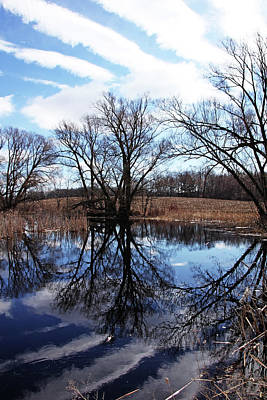 Photograph - Roadside Pond Iv by Debbie Oppermann