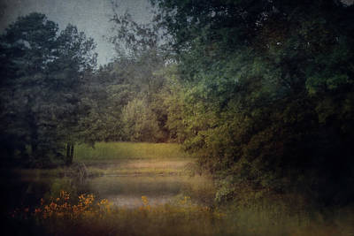 Photograph - Roadside Retreat by Jai Johnson