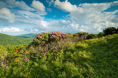 Photograph - Roan Highlands Grassy Ridge Appalachian Trail by Rick Dunnuck