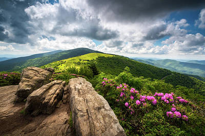 Appalachian Wall Art - Photograph - Roan Mountain Radiance Appalachian Trail Nc Tn Mountains by Dave Allen