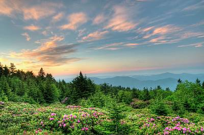 Roan Mountain Sunrise Art Print