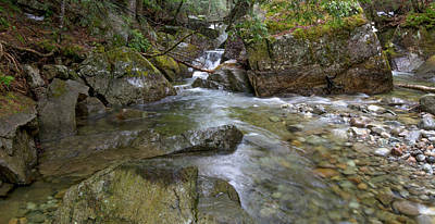 Photograph - Roaring Brook by Steven Wilson