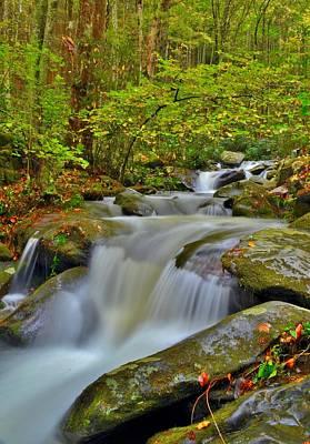Waterfalls Photograph - Roaring Fork Cascade by Dennis Nelson