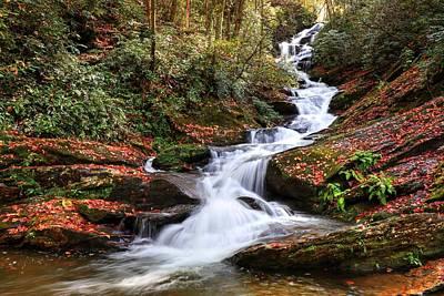 Photograph - Roaring Fork Creek Falls  by Carol Montoya