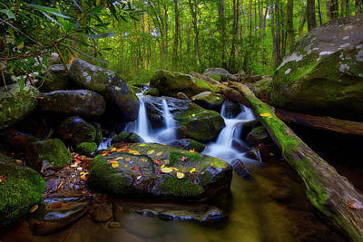 Photograph - Roaring Fork Motor Trail Stream Waterfalls Smoky Mountains Tennessee by Justin Kelefas