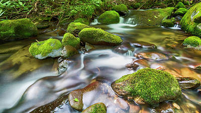 Roaring Fork Waters Art Print by Stephen Stookey