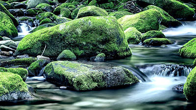 Roaring Forks Mossy Rocks - Muted Green Art Print