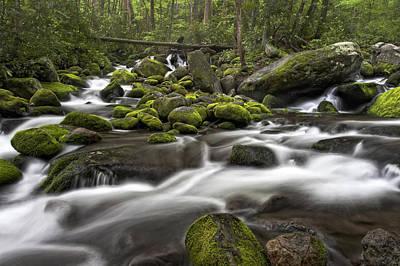 Photograph - Roaring Forks River by Ken Barrett