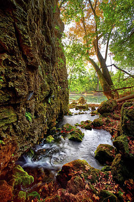 Photograph - Roaring Spring by Robert Charity