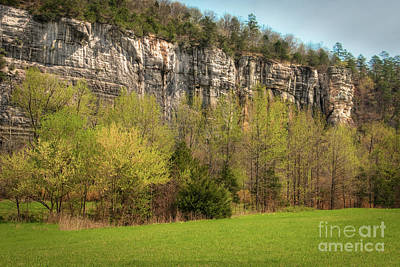 Photograph - Roark Bluff by Tamyra Ayles