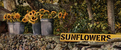 Photograph - Roadside Sunshine by Robin-Lee Vieira