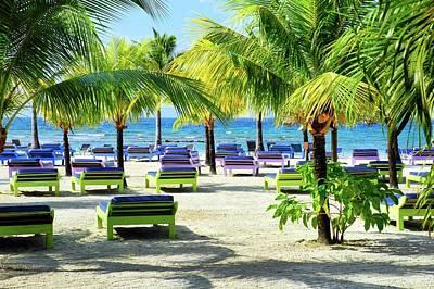 Roatan Island Resort Art Print