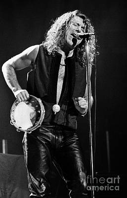 Robert Plant Performance Art Photograph - Robert Plant-0062 by Timothy Bischoff