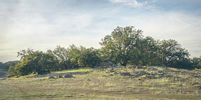 Photograph - Roberts Ranch Oak Knoll by Alexander Kunz